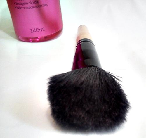pincel-resenha-dailus-higienizador-de-pincéis-carol-doria-2015